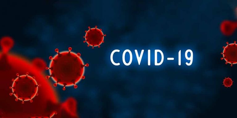 Gli indizi raccolti svelano il mistero del coronavirus?