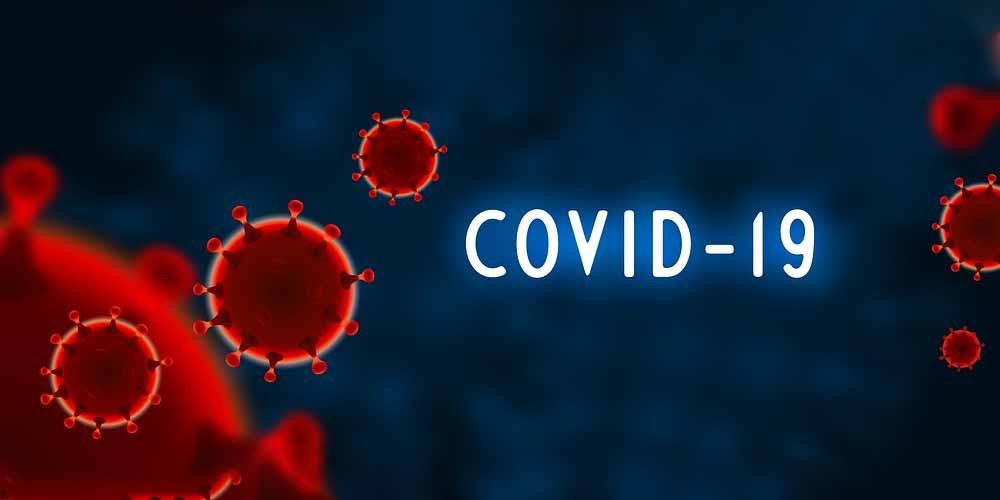 Gli indizi raccolti svelano il mistero del coronavirus