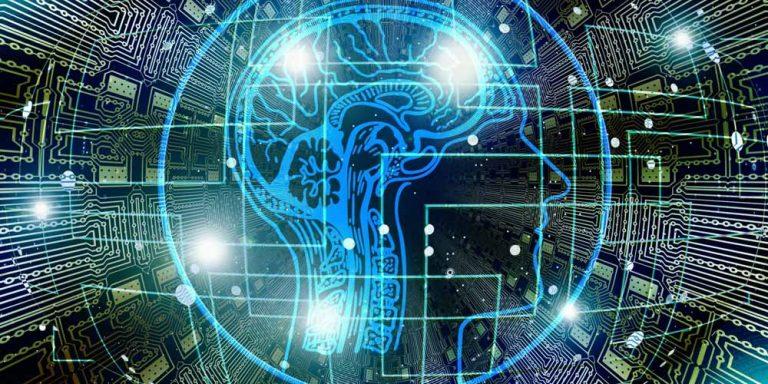 Team di scienziati crea l'equivalente di un cervello