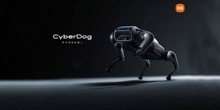 CyberDog il cane robot si comporta con un cucciolo reale